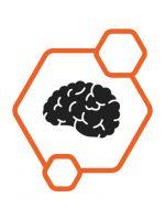 brains-01